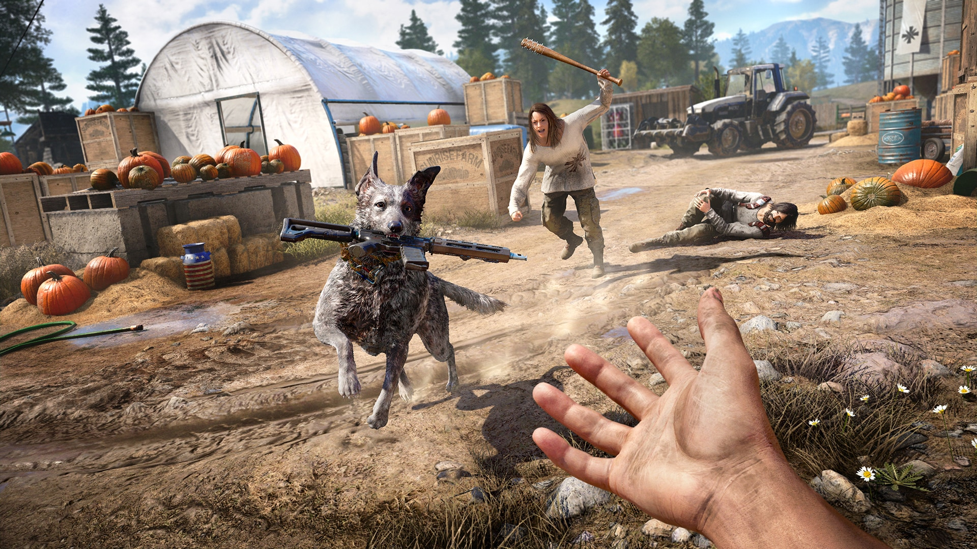 Far Cry 5 companions boomer dog